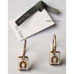 Little Luck Clear & Gold Horseshoe Earrings