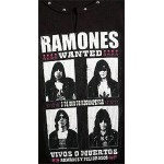 Ramones Stone Beater WANTED